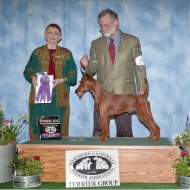 Finn, Winners Dog, NCTA Speciality